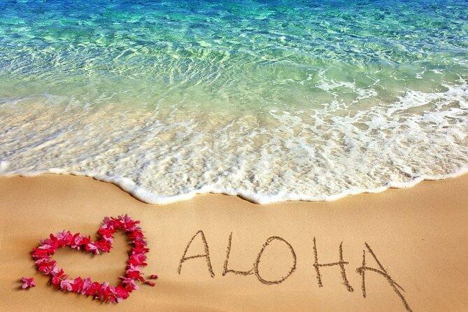 Aloha Grand Island Tour
