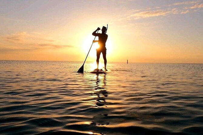 Reef Snorkel and Paddle Combo Tour of Fort Lauderdale Beach (Old Bio RocK)