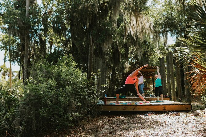 Guided Hike and Yoga Adventure in Fox Lake Park