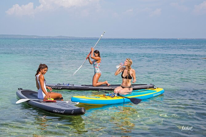 Day Tour Paddleboard