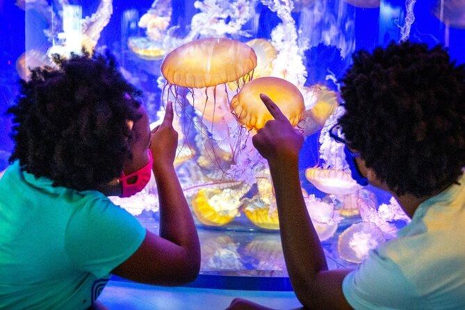 Skip the Line Aquarium of the Pacific Ticket