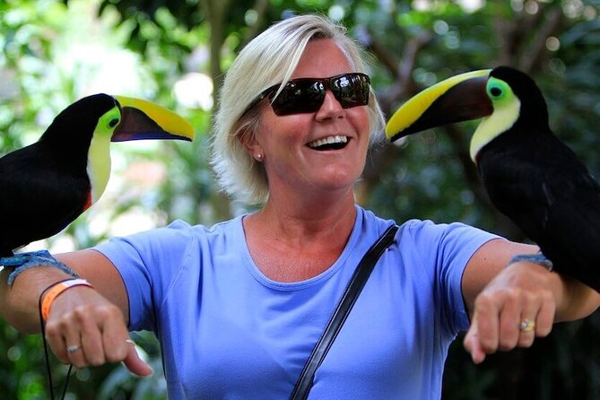 Private Day Tour in La Paz Waterfall Gardens & Baldi Hot Springs from San Jose