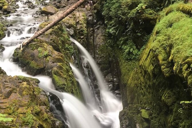 Private Olympic National Park Tour from Seattle