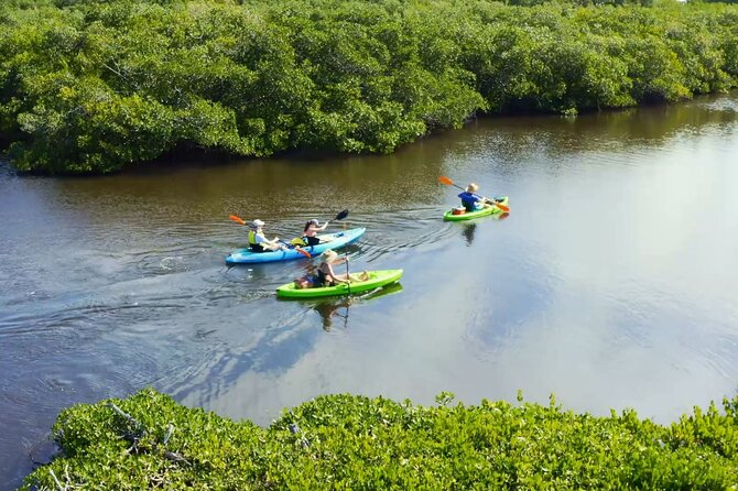 Kayaking the Canals of Venice, FL