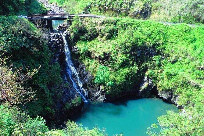 Road to Hana Private Jungle Tour
