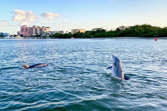 Dolphin Tiki Cruise around Fort Myers Beach
