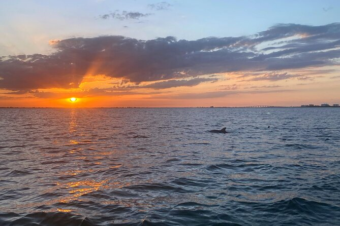 Sunset and Dolphin Cruise around Fort Myers Beach