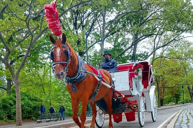 NYC Central Park Horse and Carriage Ride: Long Ride 45 min