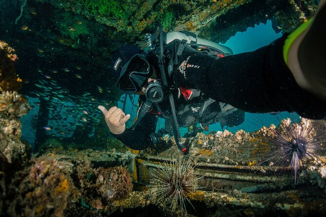 Dive Brunei and Rainforest Discovery II