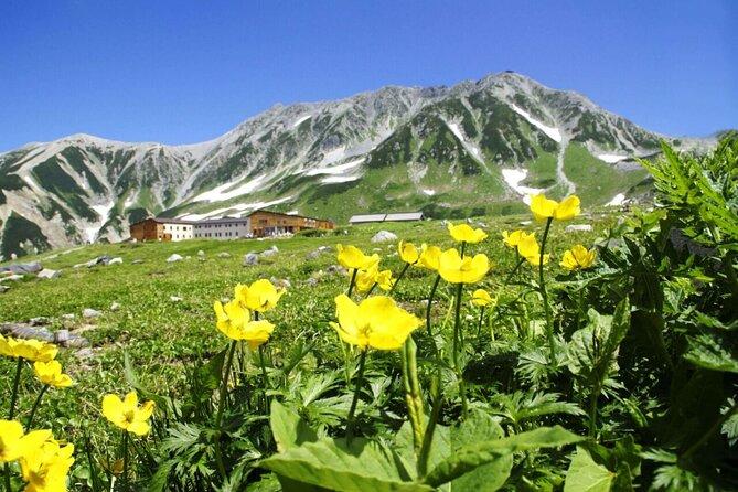 1-Day Tateyama-Kurobe Tour: Walking on the 'Roof of Japan'