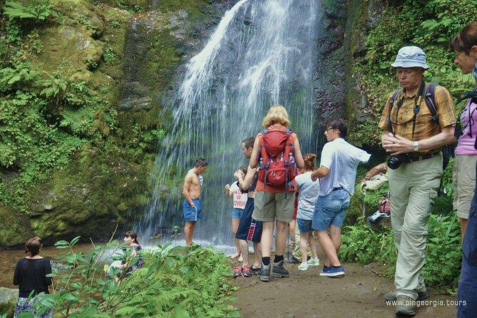 Private Hiking Tour to Mtirala National Park from Batumi