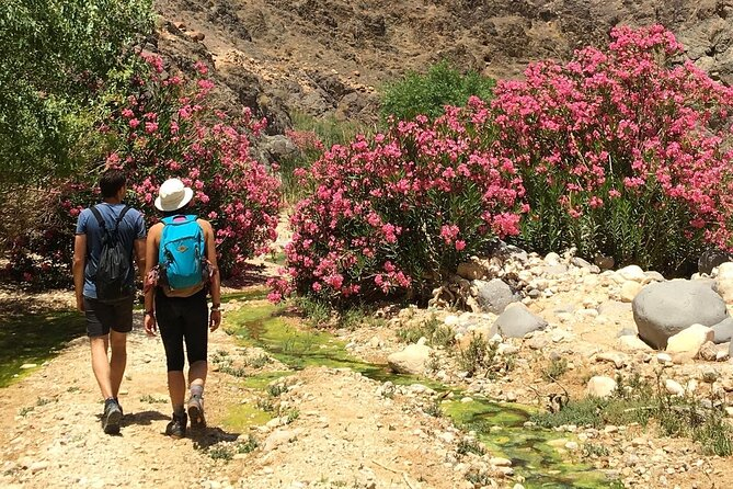 Wadi Al Ghuweir - Guided hike through a spectacular canyon with water