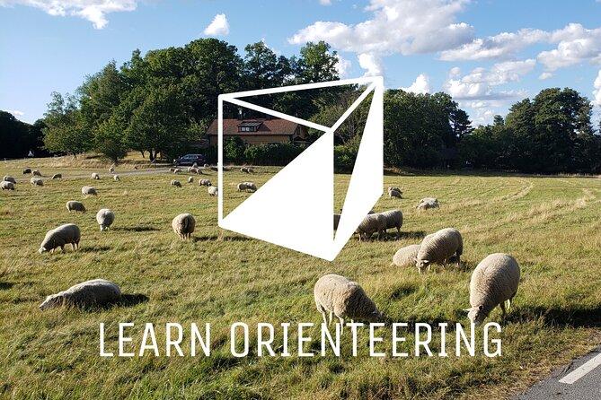 Orienteering private beginner's course in northern Royal Djurgården