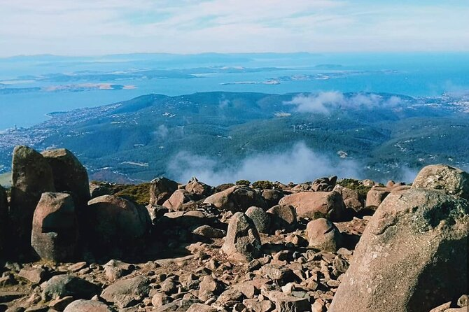 Mount Wellington Ultimate Experience Tour from Hobart