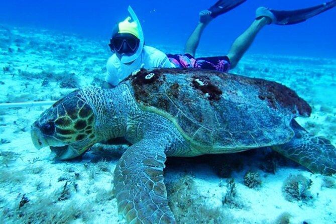 El Cielo Palancar and Columbia Snorkeling Tour