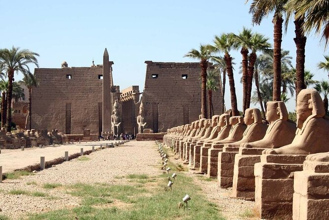 From luxor special Nile cruise program for 3 nights with plane ticket from Cairo