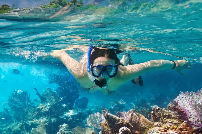 Snorkel in underwater museum MUSA