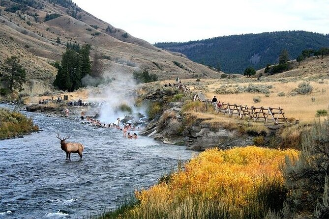 6-Day American West Yellowstone National Park and Grand Teton Spirit Tour