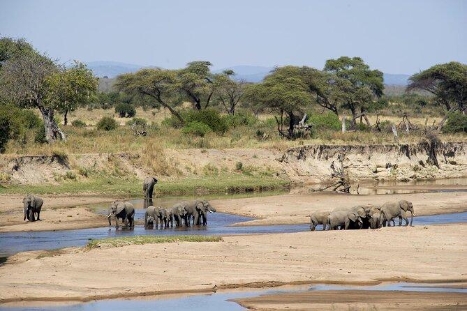 2 Days Safari to Nyerere (Selous) National Park