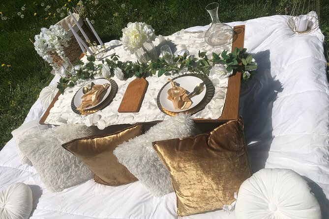 Outdoor Luxury Themed Picnic Setup in Detroit