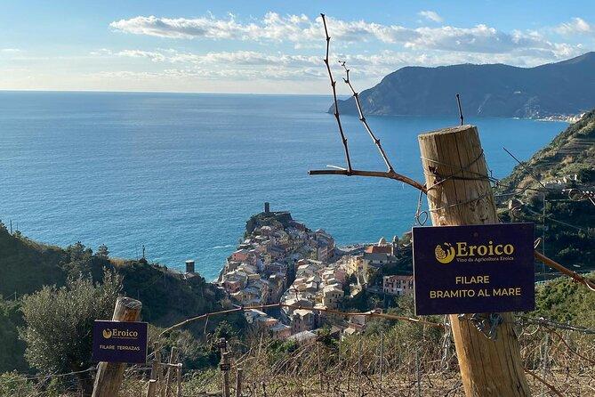 Vernazza Eroico Vineyard Experience