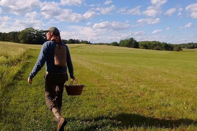 Guided Foraging - Mushroom Hunting Experiences