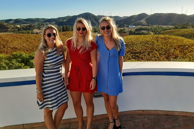 Wine Tour and Tasting - Small group