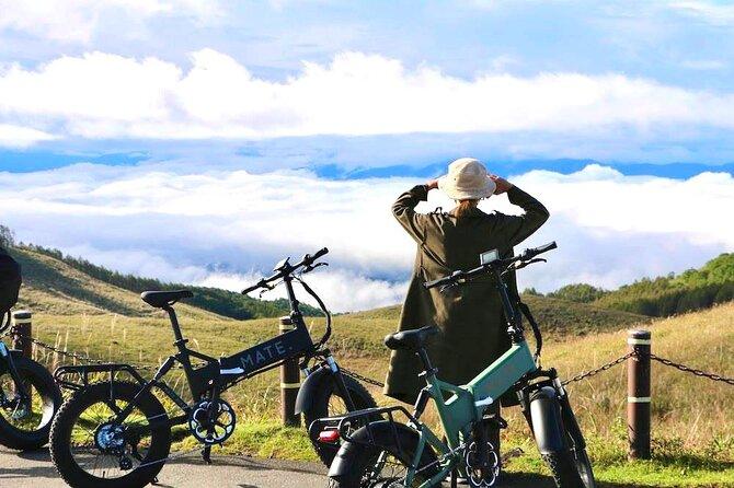 Small Group Thrilling E-Bike Tour of Nagano