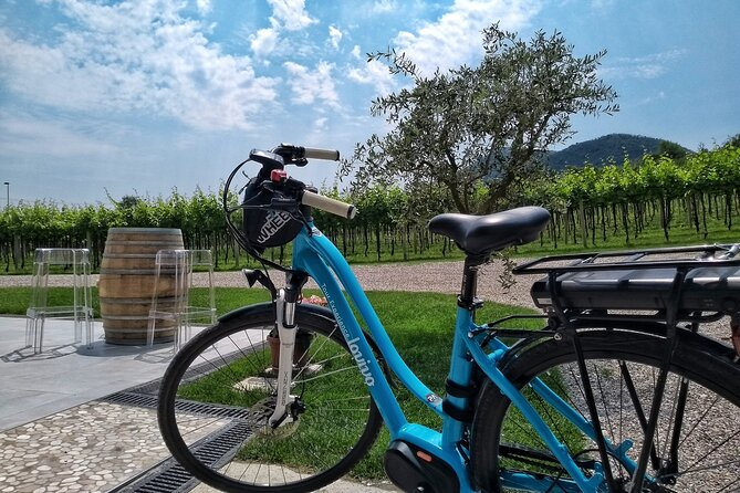 Bike Tour with Wine Tasting in the Euganean Hills From Padua