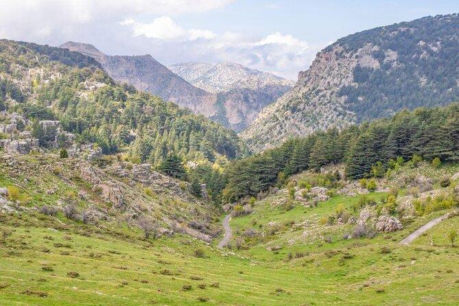 Forest of the Cedars of God (Horsh Arz el-Rab)