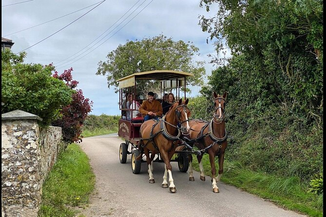Horse Drawn Countryside Tours