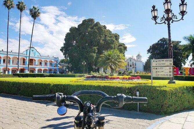 Biking to The Ancient Tree of El Tule