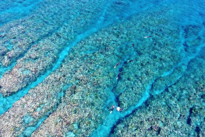 Half-Day Snorkeling Experience in Kerama Islands from Naha