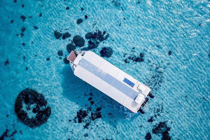 Ningaloo Reef Half-Day Snorkeling Bonanza from Glass Bottom Boat