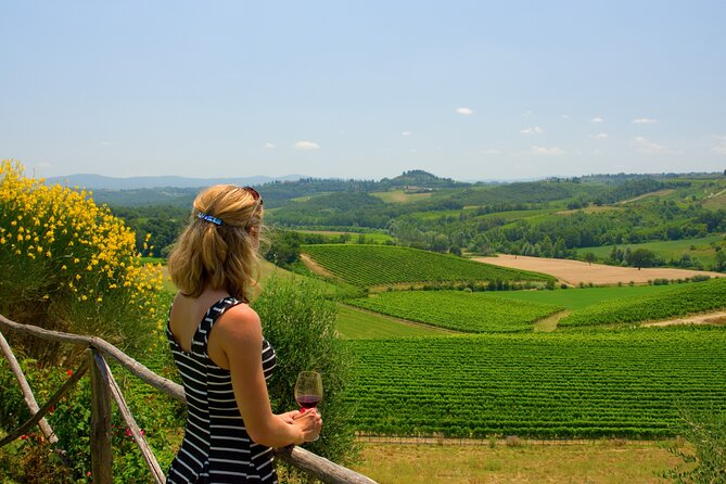 Discover the wine producers of Emilia Romagna
