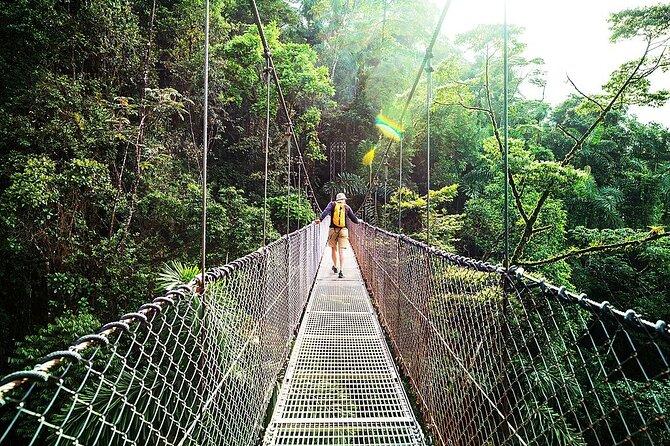 Combo: Day Trip to Hanging Bridges + ZipLine in Monteverde