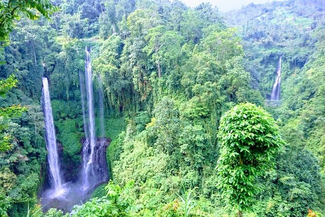 Private Tour The Magical Sekumpul Waterfall in The North of Bali