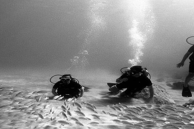 No Certification Required Scuba Dive and Island Tour with Guide