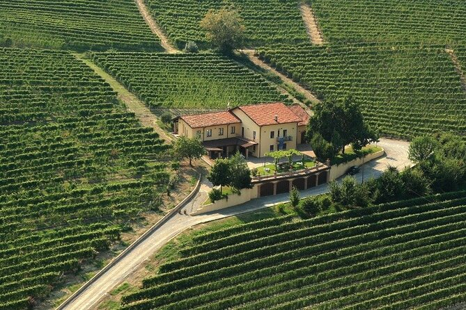 Langhe half day tour with light lunch included