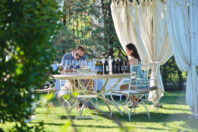 San Gimignano Wine Tasting Experience with Food