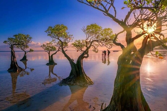4 Days 3 Nights tour to Explore Best of West Sumba and East Sumba