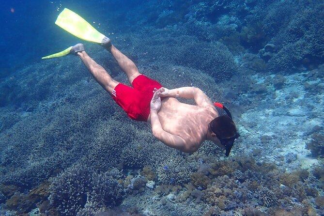 From Lembongan: Snorkeling Day Trip to Nusa Lembongan & nusa Penida island