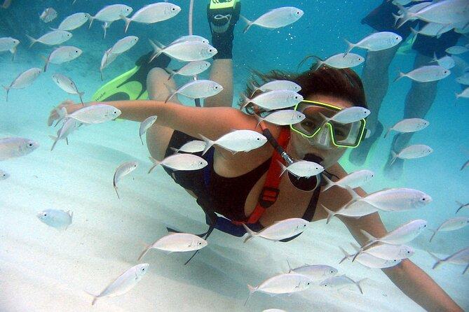 SNUBA® Adventure in Saint Lucia