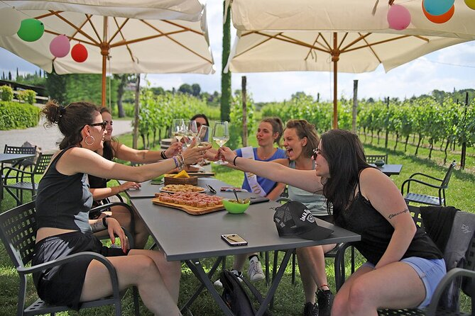 Wine and Food Tasting in the Vineyards in Lazise