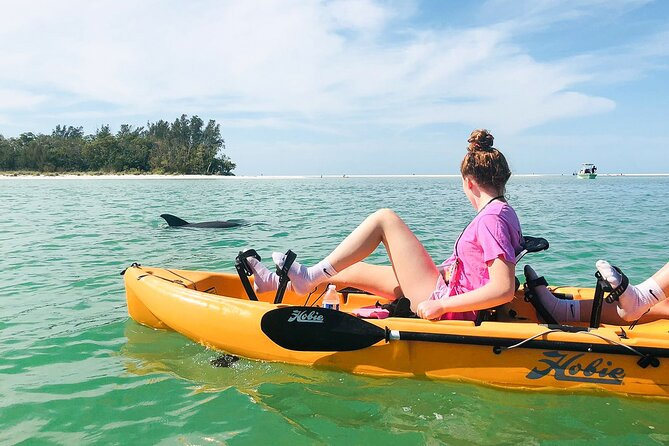 Ten Thousand Islands Eco Tour and Shelling with Hobie Kayak (with pedals)