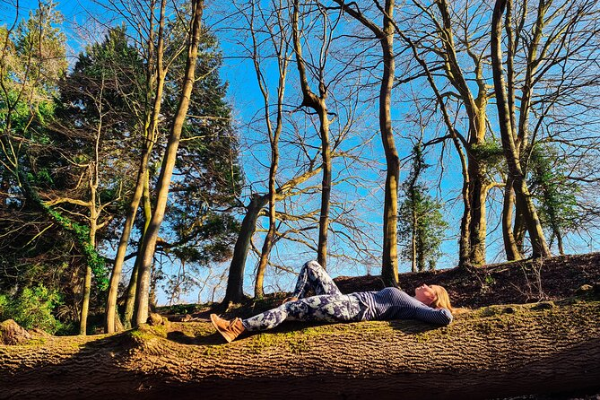 Half-day Forest Bathing and Yoga in Brighton's Woodlands