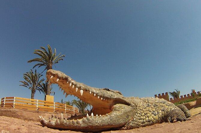 Crocoparc Agadir Trip Including Passes & Entrance Fee