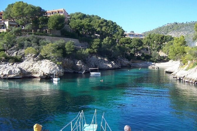 Paradise Tour 4h in Catamaran through Mallorca and Puerto Andratx with Lunch