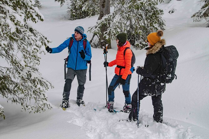Snowshoeing Adventure with Ice-Fishing, Fire and Survival