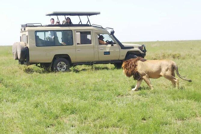 3-Day Private Safari in Manyara, Ngorongoro and, Tarangire - Mid Range Stay